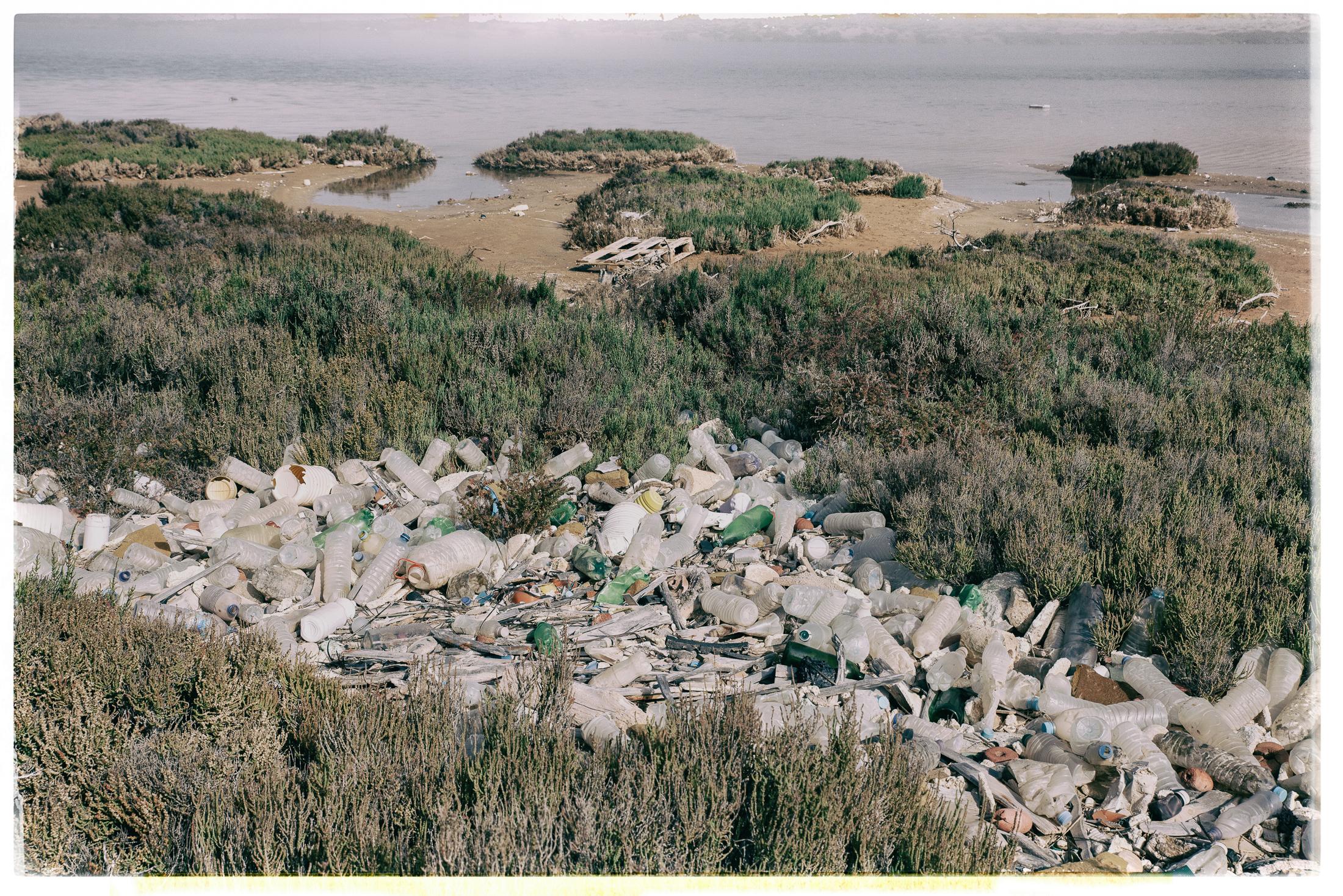 Müll & Plastik